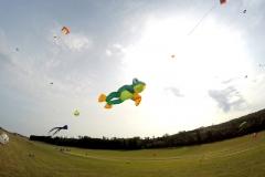20161001_KiteFlyHigh_Drachenfest-Laichingen-2016_Revolution_Drachen_Einleiner_Kiten_Kite-Schule_Event_Veranstaltung_Kite_Fest_Drachen_Lenkdrachen_Community